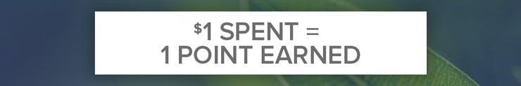 $1 spent = 1 point earned
