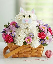 Cat Flower Arrangement in Boston, MA