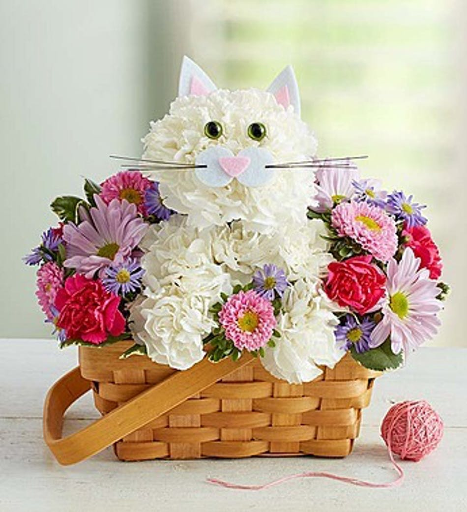 Cat flower arrangement in boston ma central square florist cat flower arrangement in boston ma mightylinksfo