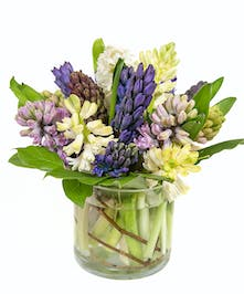 Hyacinth blossoms are a harbinger of spring and have a sweet, distinctive fragrance