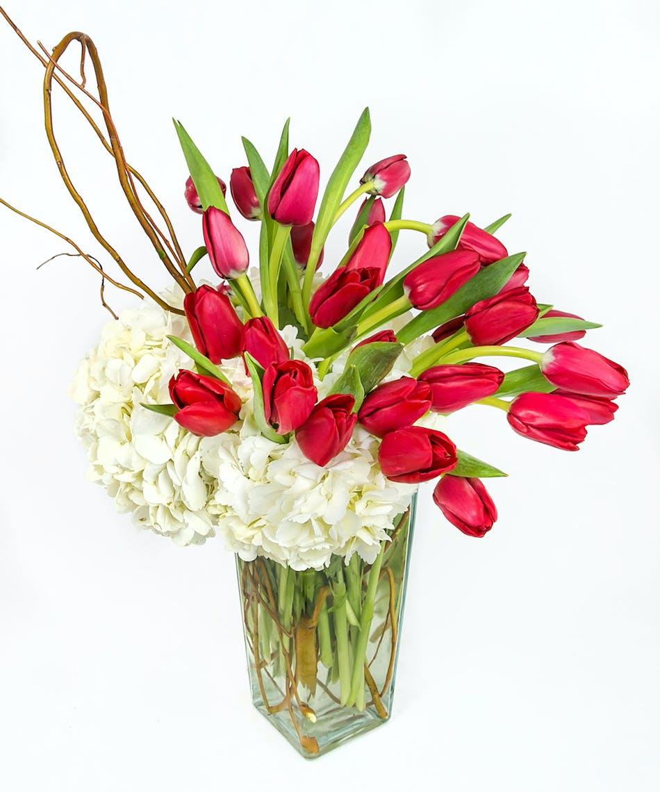 Valentines day flower delivery boston ma central square florist tulips and hydrangea in a clear glass vase in boston ma izmirmasajfo