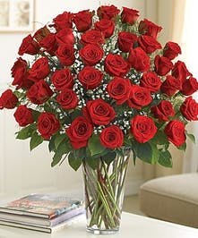 Long Stem Red Roses - Same-day Delivery  Boston, MA - Central Square Florist