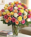 Long Stem Multi-Colored Roses