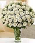 Long Stem White Roses