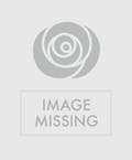 Bright Mixed Flower Standing Cross