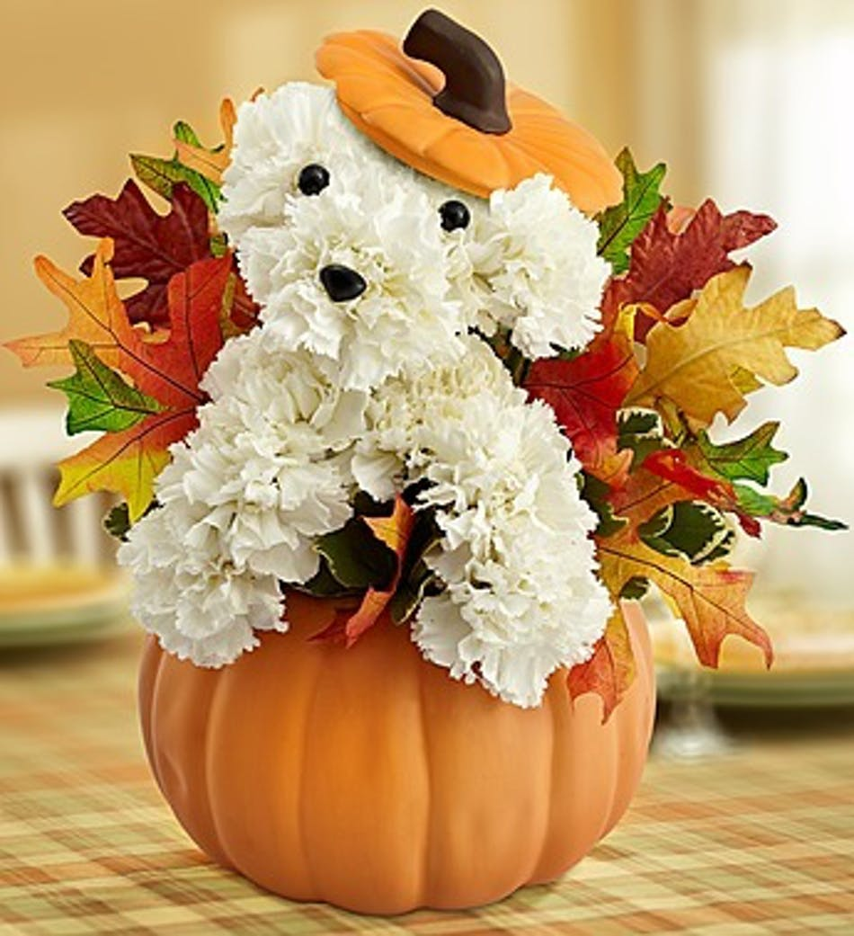Halloween Fun with Flowers and Gifts - Central Square Florist