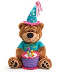 Plush Birthday Bear