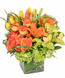 Yellow tulips, orange lilies, orange roses and hydrangea make up this sunny cube. Great for any autumn gathering