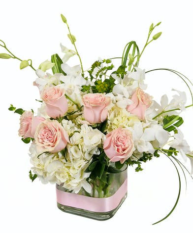 Welcome a special baby girl with this cube arrangement filled with hydrangea, stunning hot pink roses and dancing fancy greens.