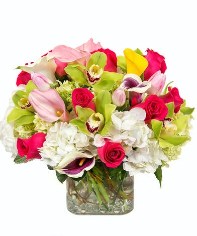 Breath of Spring Floral Bouquet in Boston, MA - Central Square Florist
