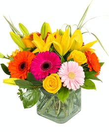 Bright & Stunning - Boston, MA Florist by Central Square