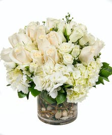 Central Square Florist: All White Cylinder Arrangements
