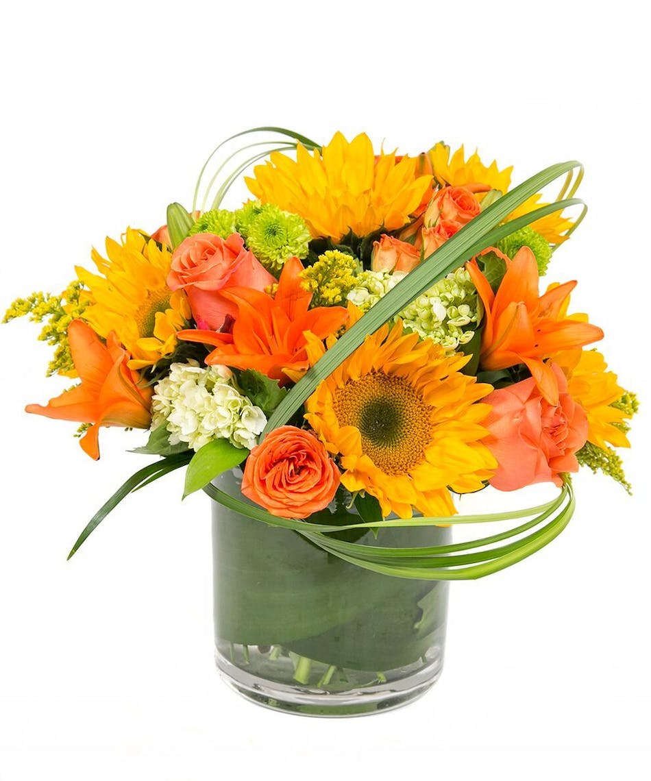 Autumn in boston floral bouquet same day delivery nationwide autumn in boston design features sunflowers lilies and hydrangeas designed in a cylinder vase izmirmasajfo