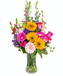 Includes sunflowers, roses, gerbera daisies & more.