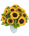 Sunflowers in White Glass Vase