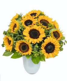Sunflowers in White Glass Vase