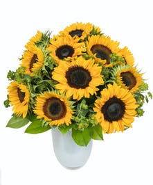 Sunflowers in White Glass Vase in Boston, MA