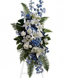 Tranquil blue and white flowers reminiscent of a soft ocean breeze offer comfort
