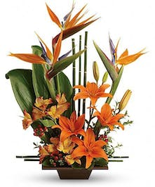 Send good feng shui someone's way with this striking arrangement