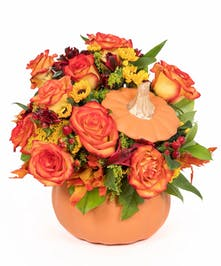 Celebrate the beauty of fall with this colorful, heartwarming mix of roses and alstroemeria, hand-delivered in our classic ceramic pumpkin.
