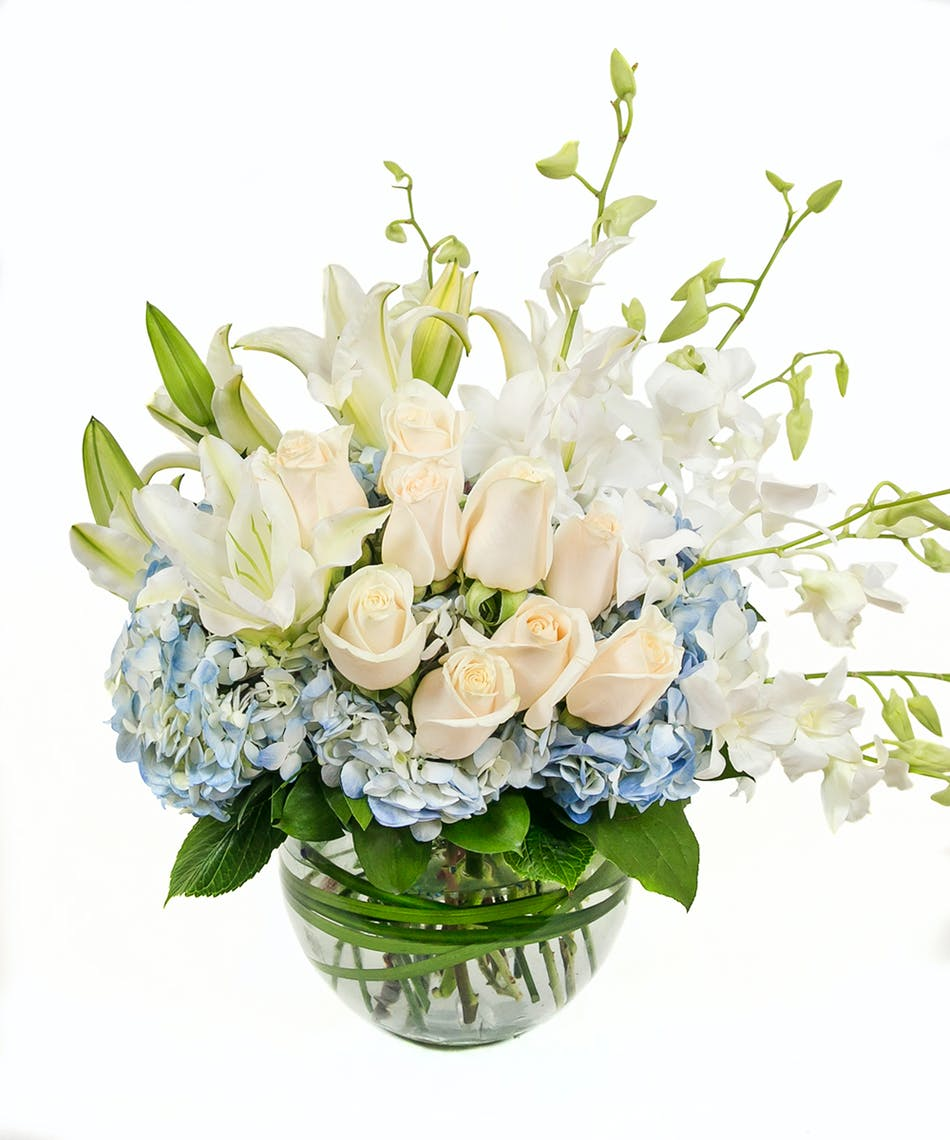Blue white bowl in boston ma central square florist mightylinksfo Choice Image