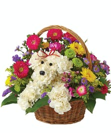 nleash smiles with our original and fun Cute Dog in Basket!
