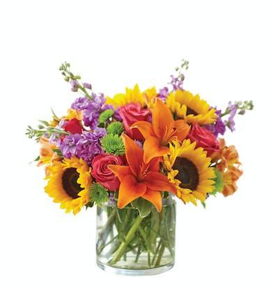 Bright flower arrangement in cylinder vase in Boston, MA