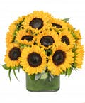 Cube of Sunflowers