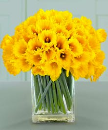 Send the warmth, cheer and generosity of a sunny day with this vibrant daffodil bouquet!
