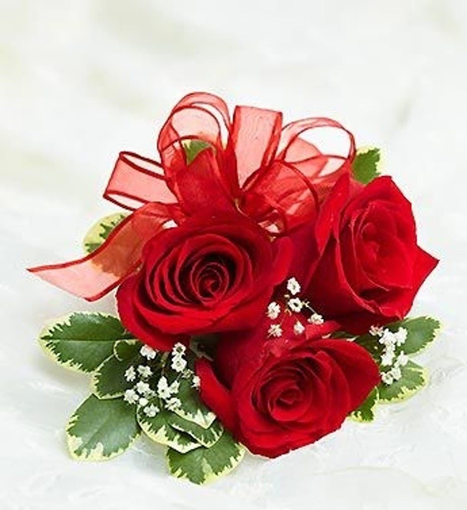 Red rose corsage in boston ma central square florist will call only izmirmasajfo
