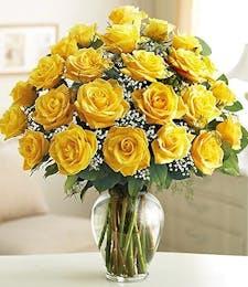 Long Stem Yellow Roses