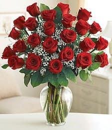 Long Stem Red Roses