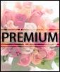 Premium - 18 Roses, 28 Tulips