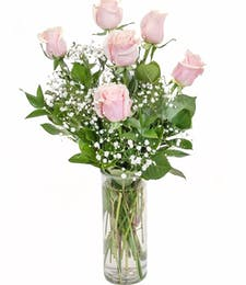 Love's Embrace Pink Roses