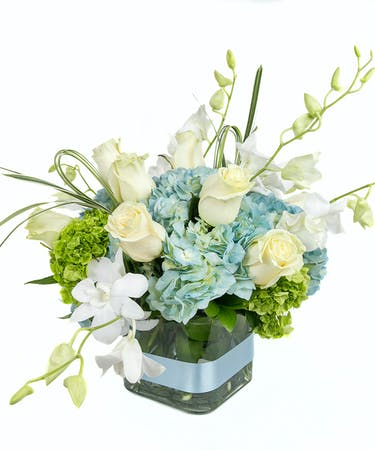 Baby Boy Floral Arrangement Delivery Boston Ma