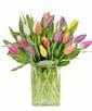 Deluxe - 25 Tulips