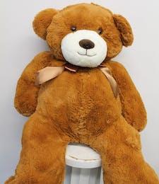 The Great Big Teddy Bear
