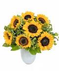 12 Sunflowers