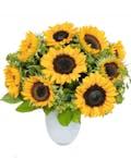 16 Sunflowers