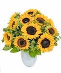 20 Sunflowers